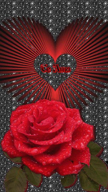 ازرعوا الحب في قلوبكم وانقلوه الي قلوب الناس، أدين بالكثير لأصدقائى الذين يزرعون الحب في حدائق حياتنا. الذين يجعلون من طيبتهم وعطائهم بلسماً يخفف علينا قسوة الحياة ياليتنا نستطيع أن نمنحهم ما يستحقون....