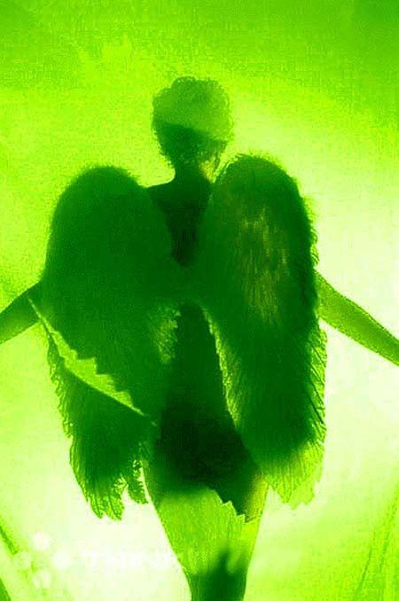verde---➽viridi➽πράσινος➽green ➽verde➽grün➽綠➽أخضر ➽зеленый Dark Green Aesthetic, Rainbow Aesthetic, Aesthetic Colors, Aesthetic Pictures, Photo Wall Collage, Picture Wall, Neon Green, Green Colors, Verde Vintage