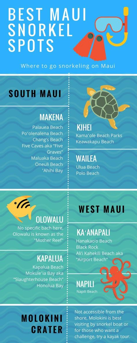 The Best Snorkeling Spots Around Maui Hawaii | Unique Free Maps