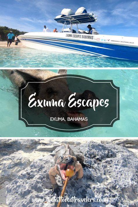 Exuma Escapes | Travel Ideas | Exuma bahamas, Bahamas