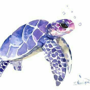 تفسير رؤية السلحفاة في المنام و السلحفاة الخضراء في الحلم Sea Turtle Painting Turtle Art Turtle Painting