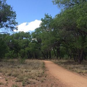 Albuquerque Bike Trails For Families Bike Trails Travel New