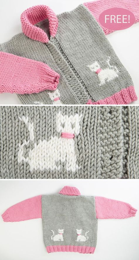 Sweaters for Cats: Amazon.com | 886x474