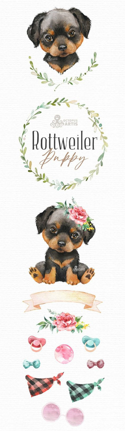 Rottweiler. Watercolor little animal clipart, portrait, puppy, doggie, baby, flowers, kids nursery,