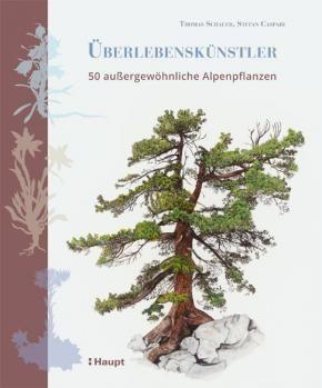 Schauer Thomas Caspari Stefan Uberlebenskunstler 50 Aussergewohnliche Alpenpflanzen 978 3 258 08079 6 Www Haupt Ch Pflanzen Alpen Hochgebirge