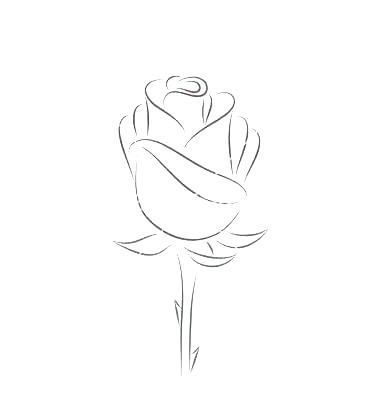 Rose Drawing Video How To Draw A Rose Includes A Video Tutorial In Rose Drawing Simple Roses Drawing Rose Outline