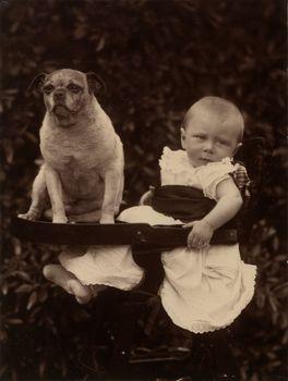 Prince Alexander Of Battenberg With Basco A Pug Pug Photos