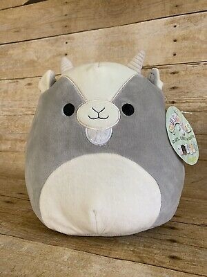 Walker The Adorable Goat Is Ready To Be Adopted Into A New And Loving Squishmallows Family He Is 8 Inches Of So Cute Stuffed Animals Animal Pillows Cute Toys