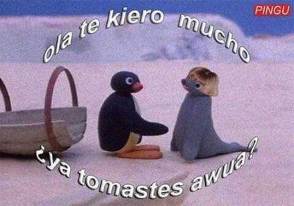 New Memes Love Pingu Ideas Memes Nuevos Memes Romanticos Memes Amor