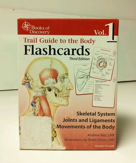 Trail Guide To The Body Flashcards Vol 2 Muscles Of The Body V2 By