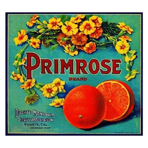 Monrovia Ace High Orange Citrus Crate Label Art Print