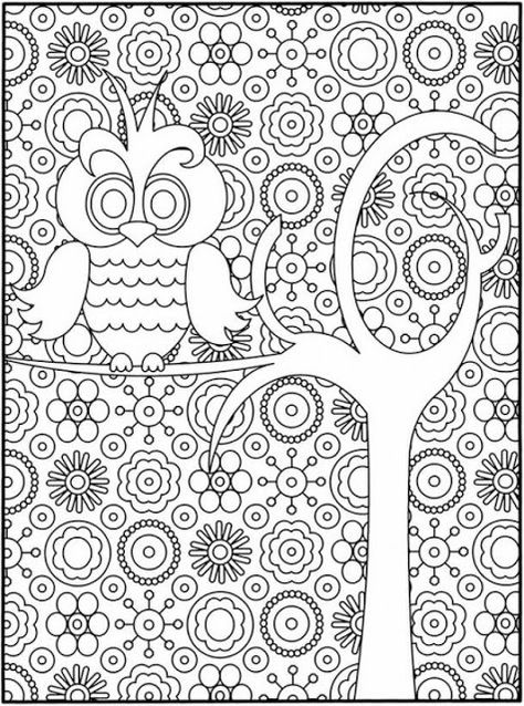 Owl In Tree Free Printable Adult Coloring Pages Free Printable