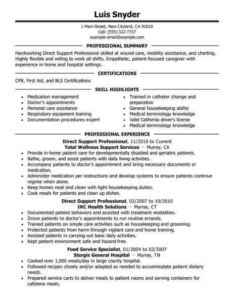 Best Direct Support Professional Resume Example With Images