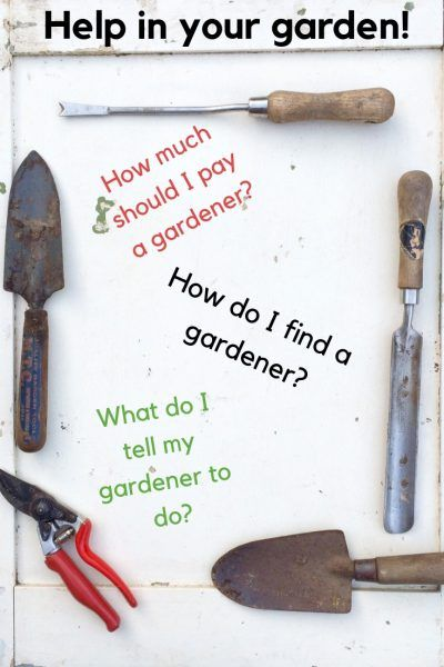 253aadcdc803720b13ed2caf552a83bf - How Much Should A Gardener Cost