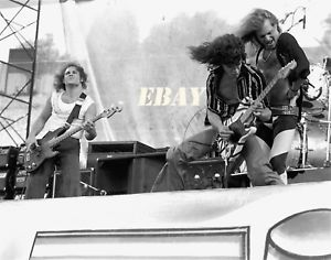 Van Halen Lot Of 11 8x10 Black Amp White Photos Day On The Green 1978 Van Halen Photo Black White Photos