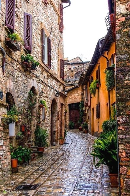 Spello Province Of Umbria Italy Italyvacation Italyvacation Places To Travel Italy Travel Places To Visit