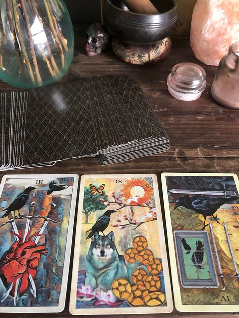 Wow picks! tarot card reading SAME DAY (3 card reading) at $3.33 Choose your wows. 🐕 #LoveRelationship #SpiritualIntuition #SameDayService #CrowMagic #AncestorGuidance #TarotReading #DivineTiming #OracleDivination #ClarityCards #PastPresentFuture