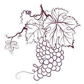 Download Grapes With Leaves stock vector Image of green illustration 6022617 in 2020 Personalized wine glass Stock photography free Outline drawings