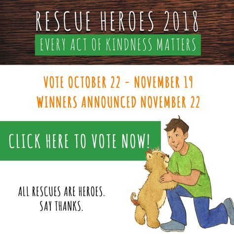 Now Is The Time For You To Cast Your Vote On Who Was The Biggest Rescue Hero Of Them All Each And Every One Of Th Foster Animals Small Pet Supplies