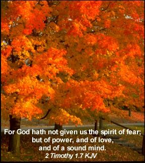 Image result for kjv autumn