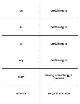 List of Pinterest medicale terminology flash cards prefixes