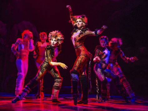 257 best Cats the Musical images on Pinterest Cats musical - best of lyrics invitation to the jellicle ball