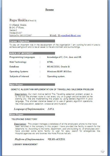CV Format For Professionals Free Download Sample Template Example - resume format for fresher