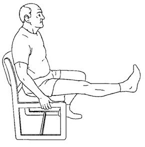 Chair Exercise Sheet2 Sitting Quad Set In 2020 Senior Fitness Chair Exercises Exercise