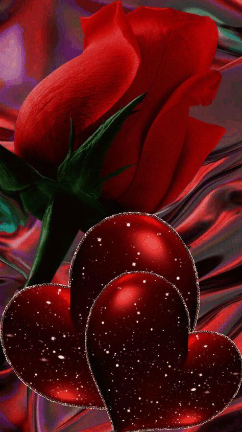 GIF découverte par Ilga Stasa. Découvrez (et enregistrez !) vos images et vidéos sur We Heart It