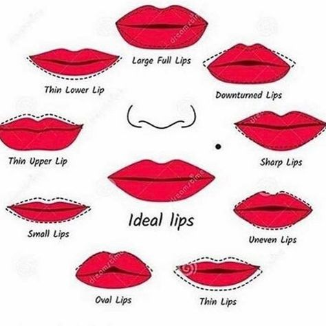 Comment your ideal lip shape 👄