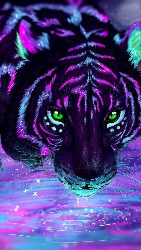 Neon Tigers Tiger Art Cute Animal Drawings Cat Art