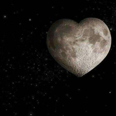 إن مهمتك ليست البحث عن الحب ،،،  بل البحث بداخلك عن تلك الجدران والحواجز للتي تبقيه بعيدا عن روحك ...