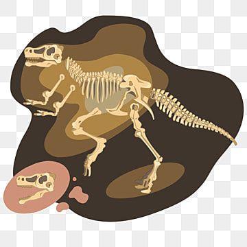 Fossil Dinosaur Tyrannosaurus Rex Dino Clipart Tyrannosaurus Dino Png And Vector With Transparent Background For Free Download Dinosaur Silhouette Dinosaur Illustration Tyrannosaurus