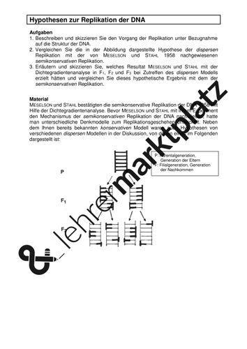 Replikation Der Dna Klausur Mit Erwartungshorizont Unterrichtsmaterial Im Fach Biologie Dna Biologie Kenntnisse
