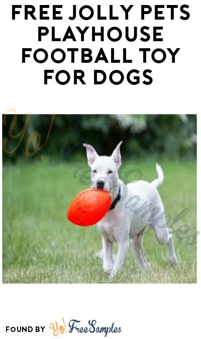 Free Jolly Pets Playhouse Football Toy For Dogs Select Accounts