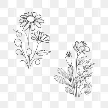 ومن ناحية رسم باقة الزهور في نمط الخط فن أسود تتفتح Png وملف Psd للتحميل مجانا Desenhos De Flores Buque De Flores Aquarela Floral