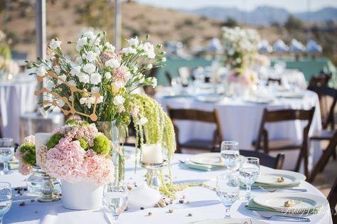 List Of Pinterest Joshua Tree Wedding Reception Diy Images Joshua