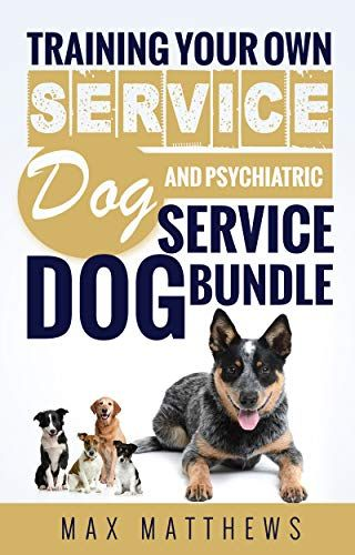 Service Dog Training Your Own Service Dog And Psychiatric Service