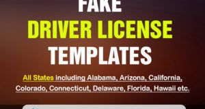 Alabama Driver License Psd Template Drivers License Psd Templates Photoshop Program