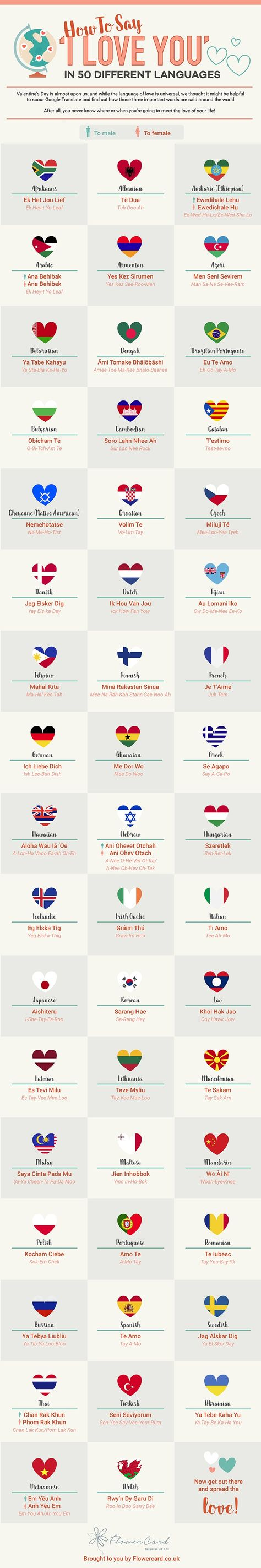 Say hello in 50 different languages infographic writing say hello in 50 different languages infographic writing pinterest infographic language and 50th buycottarizona Image collections