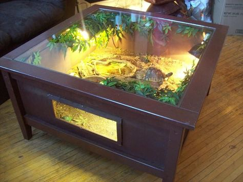 Owner says: I picked this coffie table up at a thrift store for $5.00, put a bottom, and sides on it. wired up some lighting and decorated it to create a natural environment.