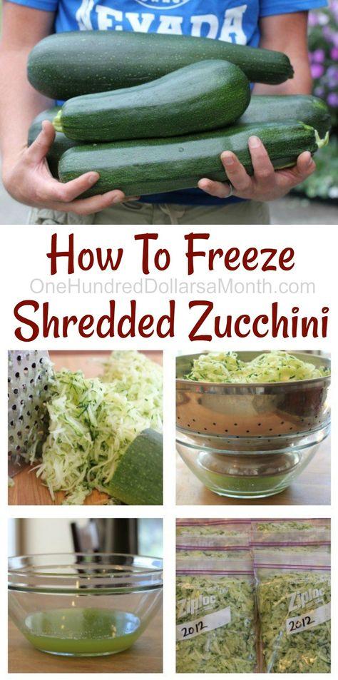 Mavis Garden Blog - How To Freeze Shredded Zucchini - One Hundred Dollars a Month