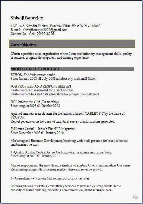 curriculum vitae format pdf download Sample Template Example of - resume format for marketing job