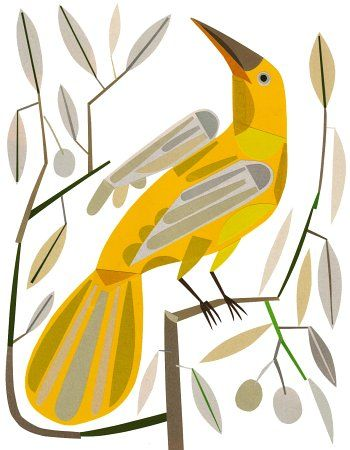vector yellow bird on a branch