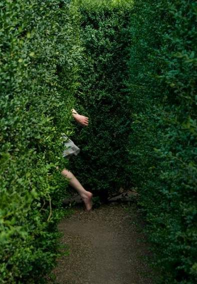 16 Trendy Garden Aesthetic Secret Photography Nature Photo