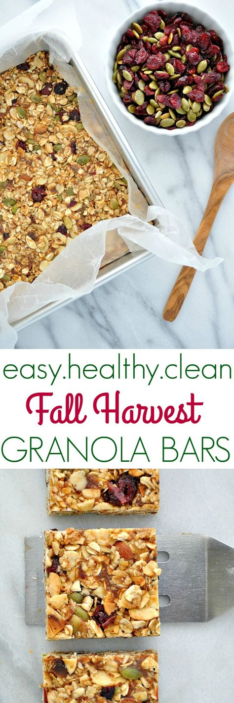 Fall Harvest Granola Bars