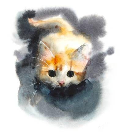 Cazas De Gatitos Gato Domestico Fondo De Gatos Ilustracion De Dibujo A Mano De Acuarela Fondos De Gato Gato Domestico Manos Dibujo