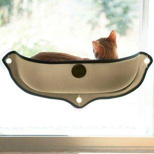 Tucker Murphy Pet Gladeview Cat Face Felt Cave In 2020 Cat Perch Diy Cat Bed Pets