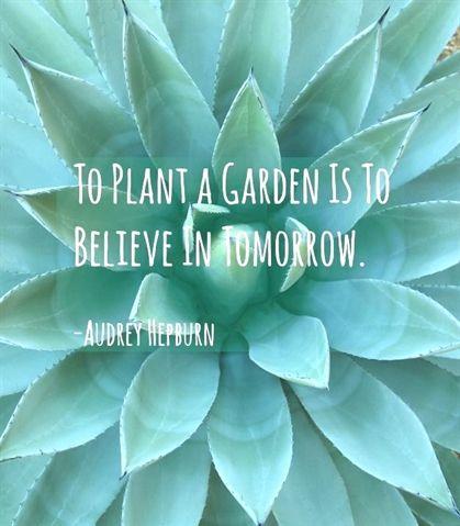 Gardening Hoe 7 Days To Die
