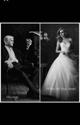 Arranged Marriage-A Dramione Fanfic - Chap 1-The Marriage